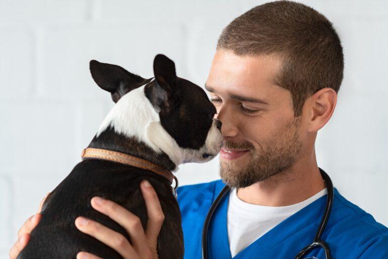 vet-loving-pet-dog.jpg